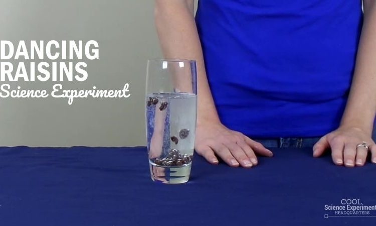 Dancing Raisins Science Experiment (2)