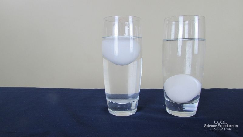 Floating Egg Science Experiment