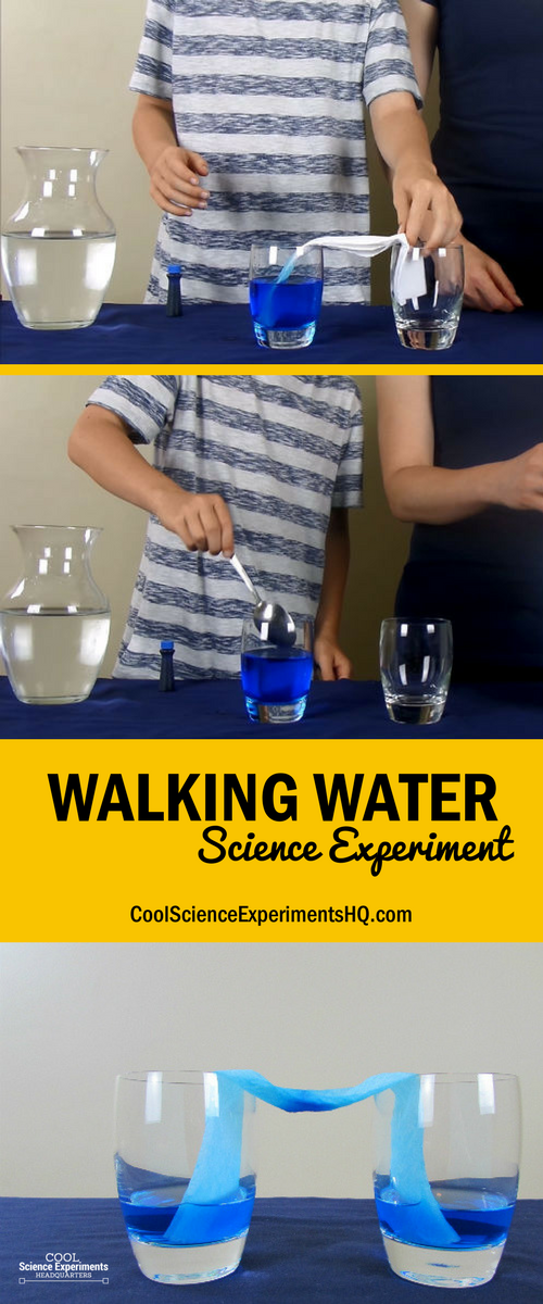 Walking Water Experiment Steps