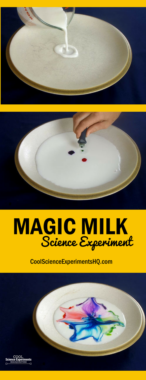 Magic Milk Science Experiment Steps