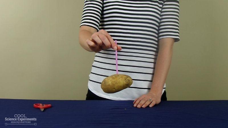 Straw Through a Potato Science Experiment