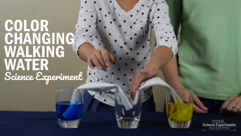 Color Changing Walking Water Science Experiment (1)